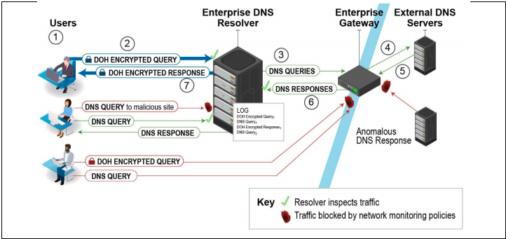 NSAエンタープライズ環境での暗号化されたDNSの採用